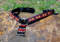 Red Southwestern